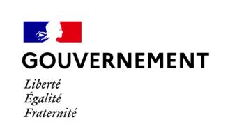 Le premier gouvernement Castex mis en place