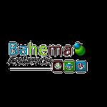 Bahema assurances
